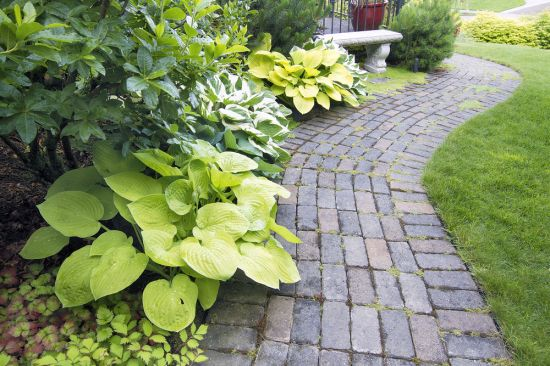 landscaping garden landscape and lawn edging section